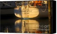 Tampa Bay Florida Canvas Prints - Island Girl Canvas Print by David Lee Thompson