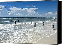 Gulf Of Mexico Canvas Prints - Isnt life wonderful? Canvas Print by Melanie Viola