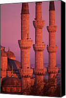 Pink Canvas Prints - Istanbul, Turkey, Blue Mosque Canvas Print by Grant Faint