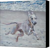 Greyhound Canvas Prints - Italian Greyhound on the Beach Canvas Print by Lee Ann Shepard