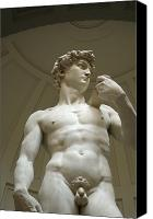 Caucasian Appearance Canvas Prints - Italy, Florence, Statue Of David Canvas Print by Sisse Brimberg & Cotton Coulson