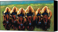 Bison Pastels Canvas Prints - Its All Bull Canvas Print by Frances Marino
