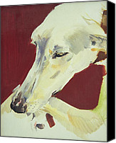 Whippet Canvas Prints - Jack Swan I Canvas Print by Sally Muir