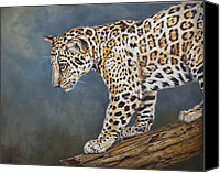 Blue Canvas Prints - Jaguar Cub Canvas Print by Enzie Shahmiri