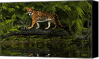 Bigcat Canvas Prints - Jaguar Canvas Print by Walter Colvin