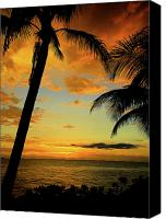Tropical Photographs Canvas Prints - Jamaican Night Canvas Print by Kamil Swiatek
