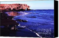 Galapagos Islands Canvas Prints - James Island Canvas Print by Thomas R Fletcher
