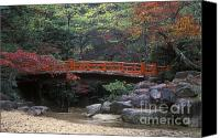 Photos Of Autumn Canvas Prints - Japan-58-15 Canvas Print by Craig Lovell
