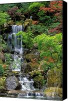 Yellow Canvas Prints - Japanese Garden Waterfall Canvas Print by Sandra Bronstein