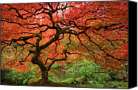 Red Canvas Prints - Japenese Garden, Portland Canvas Print by Jesse Estes