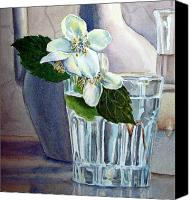 Jasmine Painting Canvas Prints - Jasmine Canvas Print by Irina Sztukowski
