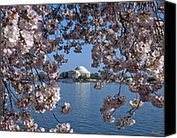 D.c. Photo Canvas Prints - Jefferson Memorial on the Tidal Basin DS051 Canvas Print by Gerry Gantt