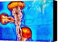 Sealife Digital Art Canvas Prints - Jellyfish Canvas Print by Bill Noonan