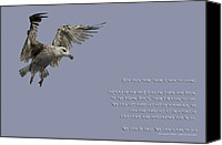  Poster Art Digital Art Canvas Prints - Jonathan Livingston - Seagull Quotation Poster Canvas Print by Andy Astbury