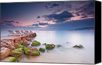 Lush Foliage Canvas Prints - Juan Les Pins, French Riviera Canvas Print by Eric Rousset