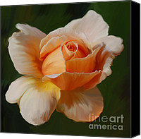 Joey Canvas Prints - Just Joey Bloom Canvas Print by Diane E Berry