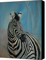 Zebra Pastels Canvas Prints - Just Looking Canvas Print by Linda Harrison-parsons