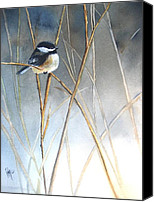 Feathers Painting Canvas Prints - Just Thinking Canvas Print by Patricia Pushaw