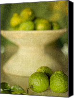 Limes Canvas Prints - Kaffir Limes Canvas Print by Linde Townsend