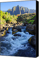 Kalalau Canvas Prints - Kalalau Stream Kauai Canvas Print by Kevin Smith