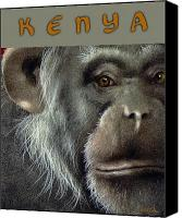 Apes Canvas Prints - Kenya... Canvas Print by Will Bullas