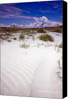 Kiawah Island Canvas Prints - Kiawah Island Beachwalker Canvas Print by Dustin K Ryan