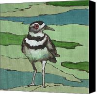 Killdeer Canvas Prints - Killdeer Canvas Print by Sandy Tracey