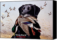 Waterfowl Canvas Prints - King Buck    1959 Federal Duck Stamp Artwork Canvas Print by Maynard Reece