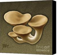 Mushroom Drawings Canvas Prints - King Oyster Mushrooms Canvas Print by Marshall Robinson