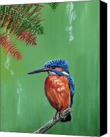 Kingfisher Canvas Prints - Kingfisher Canvas Print by Arie Van der Wijst