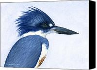 Ornithology Canvas Prints - Kingfisher portrait Canvas Print by Charles Harden