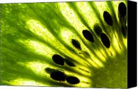 Macro Photo Canvas Prints - Kiwi Canvas Print by Gert Lavsen