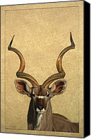 Deer Canvas Prints - Kudu Canvas Print by James W Johnson