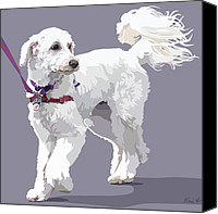 Pet Portrait Digital Art Canvas Prints - Labradoodle on a Lead Canvas Print by Kris Hackleman