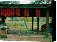 Ristra Canvas Prints - Ladder and Ristras Sopyns Fruit Stand Rinconada NM Canvas Print by Troy Montemayor