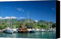 Lahaina Canvas Prints - Lahaina Harbor - Maui Canvas Print by William Waterfall - Printscapes