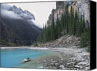 Evergreens Canvas Prints - Lake Louise North Shore - Canada Rockies Canvas Print by Daniel Hagerman