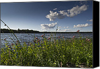 Camelot Canvas Prints - Lake view Canvas Print by Gary Eason