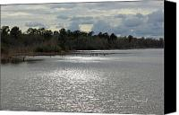Nature Canvas Prints - Lake Waccamaw II Canvas Print by Suzanne Gaff