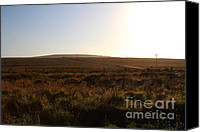 Point Reyes National Seashore Canvas Prints - Landscape At Point Reyes California . 7D9958 Canvas Print by Wingsdomain Art and Photography