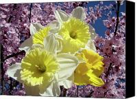 Tree Blossoms Canvas Prints - Landscape Spring Foral Yellow Daffodil Flowes Pink Blossoms Canvas Print by Baslee Troutman Fine Art Prints
