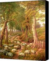 Studies Canvas Prints - Landscape with Sheep Canvas Print by Charles Joseph
