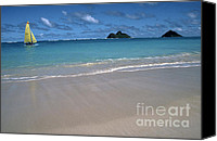 Oahu Digital Art Canvas Prints - Lanikai Beach Mokulua Islands Canvas Print by Thomas R Fletcher