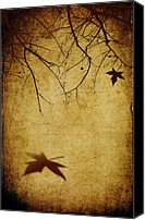 Creepy Canvas Prints - Last Breath of Autumn Canvas Print by Svetlana Sewell