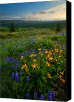 Hillside Canvas Prints - Last Light over the Wenas Canvas Print by Mike  Dawson