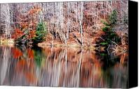 Fall Scenes Canvas Prints - Late Fall Canvas Print by Emily Stauring