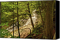 Michigan Waterfalls Canvas Prints - Laughing Whitefish Falls 2 Canvas Print by Michael Peychich