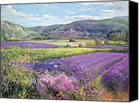 Violet Canvas Prints - Lavender Fields in Old Provence Canvas Print by Timothy Easton