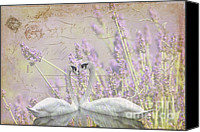 Artyzen Studios Canvas Prints - Lavender Swans Zen  Love Canvas Print by ArtyZen Studios