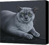 Cats Pastels Canvas Prints - Layla Canvas Print by Cynthia House